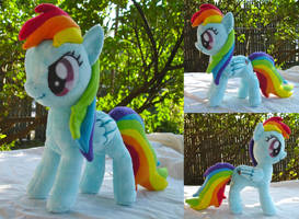 Rainbow Dash Plushie by dollphinwing