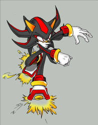 Shadow.... by goldhedgehog