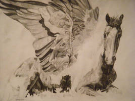 Angel Horse by tiffegreen