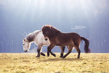Juri + Floyd by valentina-86