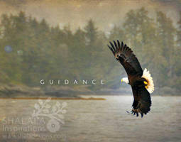 guidance by shaladesigns