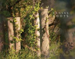 kansas roots by shaladesigns