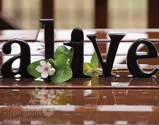 alive by shaladesigns