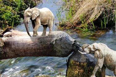 Elephant Bridge by noblewebs