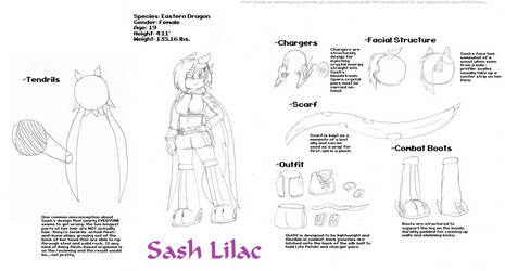 Reference Sheets - Sash Lilac - Tides of Chaos 2 by IvoRobotnikSBZ