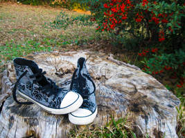 AirWalk Shoes by wickedlovely04