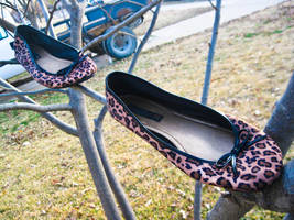 Cheetah Prints by wickedlovely04