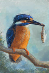 Kingfisher - digital painting by makseph