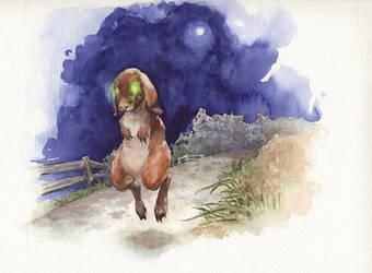 Spooky Hare by evanjensen
