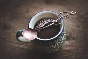 Copper Tea Spoon by twistedjewelry