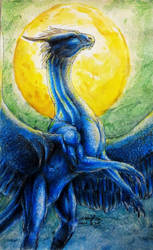 Saphira by Black-Hermit