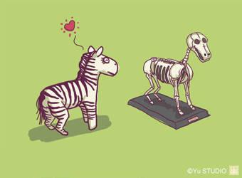 Zebra love by Harry-Yu