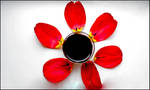 red wine and petals_2 by Ethereal-MD