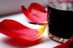 red wine and petals_3 by Ethereal-MD