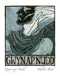 Gwyn ap Nudd by ThaliaTook