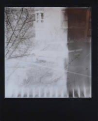 Polaroid 60 - Tree and Car by Picture-Bandit