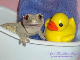 MOCHA'S NEW FRIEND by Heather-Chrysalis