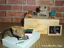 CHERISH HIDES HER SCHOOL WORK by Heather-Chrysalis