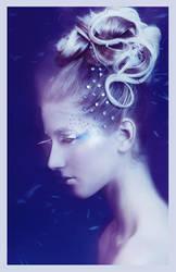 Winter Beauty by JosephineJonesMUA