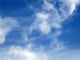 Cloud 1 by Neko-Musume