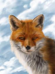 Winter Fox by jinkies36