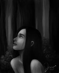 The woods are lovely, dark, and deep. by cahel14