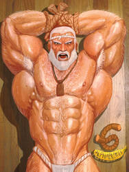 G is for Gouken by iBlokes