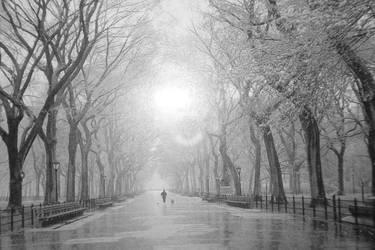 Raindrops of the City by Uniquely-Unique-x3