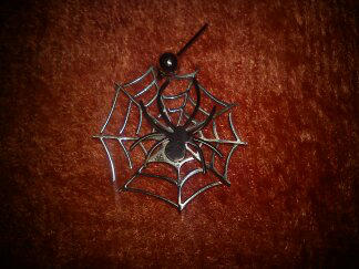 Spider Web by Ninespiders