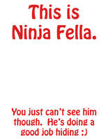 Ninja Fella by icefirechan