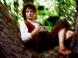 Frodo Wallpaper 2 by Elijah-Jordan-Wood