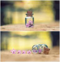 Flowers in a bottle by Simon120188