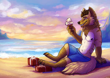 Beach days by meroaw