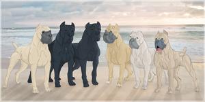 Six Generations by reinafawn