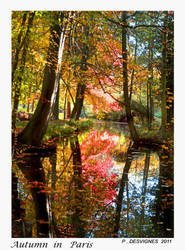 autumn in paris by bracketting94
