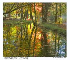 la riviere enchantee by bracketting94