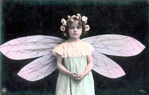 Little Vintage Fairy by SolStock