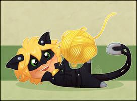 Chat's Yarn by NattiKay