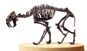 smilodon by hannay1982