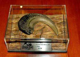 jurassic park raptor claw by hannay1982