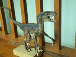 velociraptor blue by hannay1982