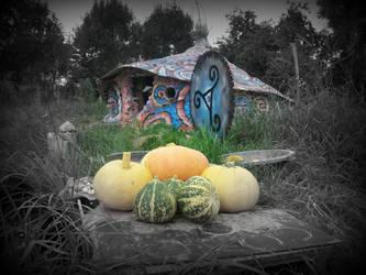 pumpkins n roundhouse garden by gangahimalaya