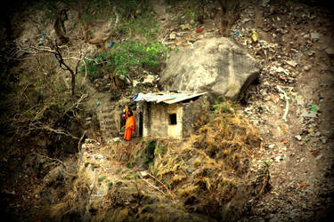 orange baba nature background by gangahimalaya
