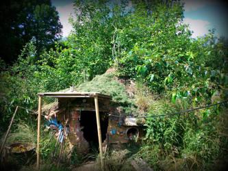 garden house with tree by gangahimalaya