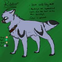 Richter ref by UnhappyMoustache