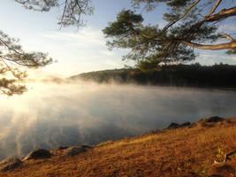 The Morning Fog by emizael