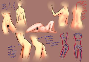 Female body study by moni158