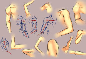Arm shoulder study 2 by moni158