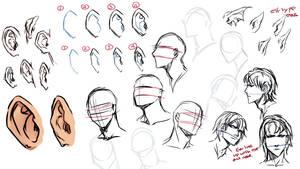 Drawing ears by moni158