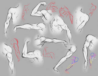 Arms by moni158